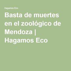 Basta de muertes en el zoológico de Mendoza | Hagamos Eco