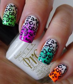 Neon Skittle with Leopard Stamping
