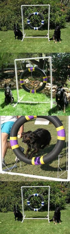 Other Dog Training and Obedience 146245: Dog Agility Tire Jump BUY IT NOW ONLY: $85.0