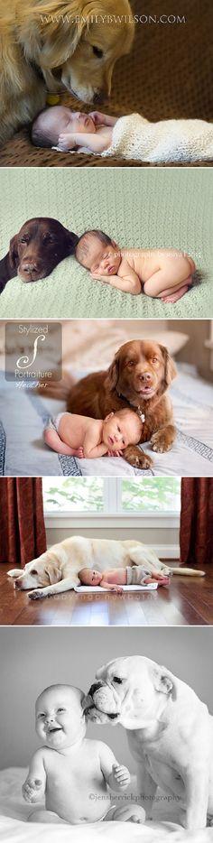 Newborn e seus cãezinhos | Les Divas