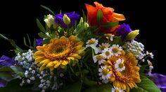 Bouquet, colorful flowers, gift wallpaper