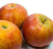 Alte Apfelsorten Übersicht  Der Apfel ist das beliebteste Obst. Wir stellen Ihnen die wichtigsten alten Apfelsorten vor.