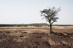 Sahel, Africa sub-sahariana,