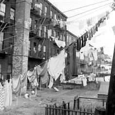 Ed Clark, Laundry out to dry, Brooklyn, 1946.