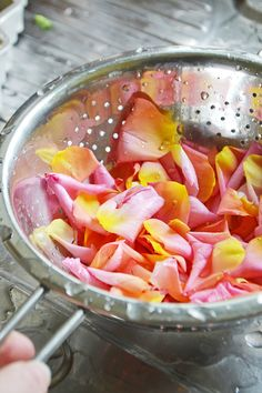 Homemade rose water: A quick and easy method