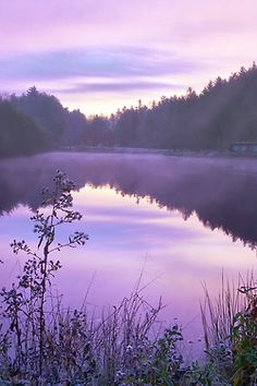 Purple aesthetic view of the suns lavender reflection. Violet Aesthetic, Lavender Aesthetic, Aesthetic Colors, Aesthetic Pictures, Purple Love, Purple Rain, Shades Of Purple, Bright Purple, Pink Purple