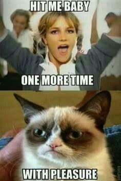 Grumpy Cat n Britney Spears
