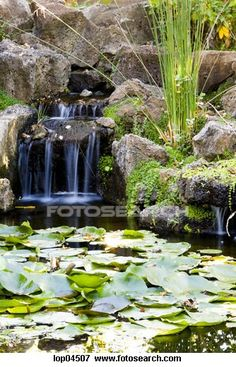 Natural looking pond