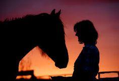 Risultati immagini per animal relationships with people