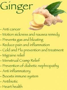 Holistic Health Remedies Health Benefits of Ginger - Do you have your daily cup of ginger tea? If yes, then here is good news for you! Here are 39 best many benefits of ginger you can't afford to miss for sure Remedies For Nausea, Herbal Remedies, Health Remedies, Home Remedies, Health And Nutrition, Health Tips, Health And Wellness, Holistic Wellness, Health Articles