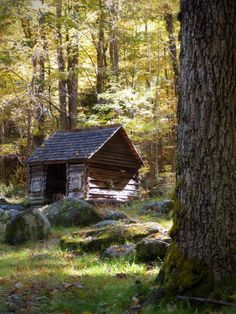 Cabin on the Roaring Fork Trail, Gatlinburg, Tennessee by Leaniepie, via Flickr