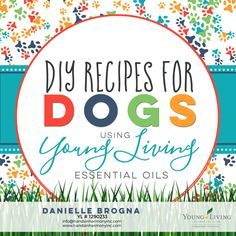 DIY Recipes for Dogs