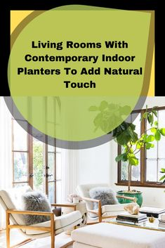 Rooms With Contemporary Indoor Planters To Add Natural Touch For someone who loves to plant, indoor plants are interesting. If you love plants and want to plant them inside, we mean on the living room, use planters . Living Room Cabinets, Indoor Planters, Beautiful Living Rooms, Contemporary, Decoration, Plants, Decor Ideas, Touch, Homes