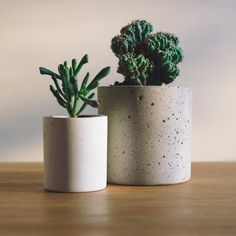 Your Indoor Plant Guide: How to Choose the Right House Plant for You and Your Home For those with shady rooms, ivy, ferns, peace lilies and spider plants are a great choice as they thrive in indirect natural light. Plant Painting, Minimal Decor, Soothing Colors, Transitional Decor, Contemporary Interior Design, Farmhouse Style Decorating, Natural Texture, Natural Light, Eclectic Decor
