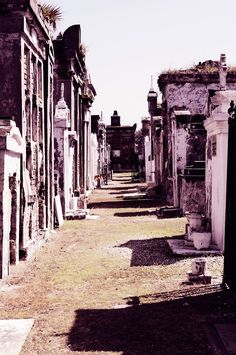 """""""Among Friends"""" Saint Louis Cemetery No. 2, New Orleans, Louisiana May 19, 2014 Copyright 2014 David Lackey for Lucid Photographic Arts"""