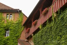 Kirchen, Pictures, Old Town
