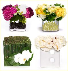 modern flower arrangements-horsetail with white orchids, can also use black bamboo or sticks sprayed black