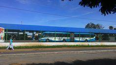 Ônibus articulado da Metrobus no Terminal do Conjunto Vera Cruz- Goiânia