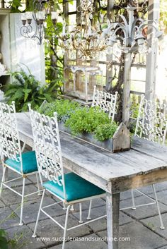 What a beautiful outdoor seating area! I love the wood planter filled with sedum succulents