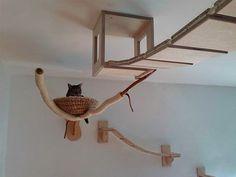 3D Cat Furniture Set: Modular Hangouts for Walls