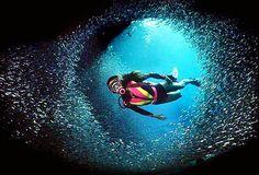 Dive Blue Corner Wall, Palau