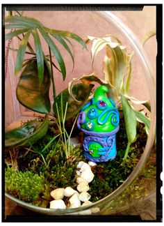 Check out this item in my Etsy shop https://www.etsy.com/listing/265621476/fairy-garden-house-in-your-choice-of