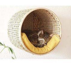 http://2.bp.blogspot.com/-zRoGk0BTilQ/UTSZ1NZX_mI/AAAAAAAAFQ0/WPLOSk5ohS4/s1600/cama+para+gato+7.jpg