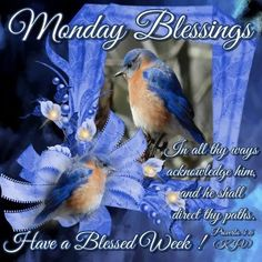 ✨Monday Blessings! ✨Proverbs 3:6 ✨