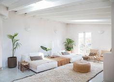 cosy yet light and airy living space, plants, trees, white beds, cool chairs