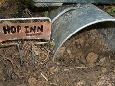 http://nancymccarroll.blogspot.co.uk/2010/07/toad-house.html