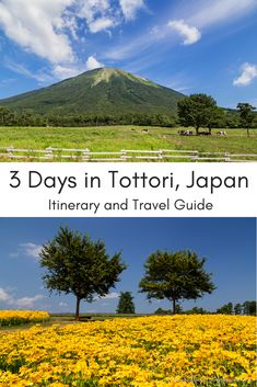 I spent 3 days in Tottori prefecture exploring an area often overlooked by foreign visitors to Japan. Here are the highlights from this diverse region. Japan Travel Guide, Asia Travel, Travel Guides, Tottori, Amazing Destinations, Travel Destinations, Beautiful Places In Japan, Amazing Places, Visit Japan