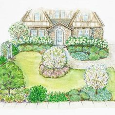 Landscaping Around Trees, Small Front Yard Landscaping, Backyard Landscaping, Landscaping Ideas, Small Front Yards, Backyard Gates, Tree Plan, Fertilizer For Plants, Landscape Plans