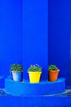 comment décorer son jardin en bleu roi, pots en bleu, jaune et en terre cuite avec des plantes, ambiance marocaine, mosaïques avec des éléments en bleu roi