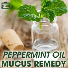 *Kid Safe Oil* Peppermint oil can be used as an expectorant and decongestant. It can clear up phlegm in your respiratory tract when used as a chest rub or inhaled through a vaporizer