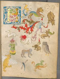 I think this might be an illustration of the inside of my head.  Fabeltiere und Initiale, 25r