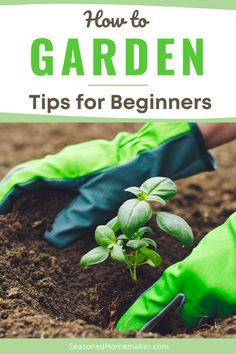 Are you a Beginning Gardener? It's time to start planning your spring garden and I have a few Gardening Tips for Beginners that will help you get you on the right path. Your first vegetable garden is sure to be a success! #gardeningtips #beginnergardening Vegetable Garden For Beginners, Starting A Vegetable Garden, Gardening For Beginners, Gardening Tips, Vegetable Gardening, Spring Garden, Home And Garden, Easy Vegetables To Grow, Popular Crafts