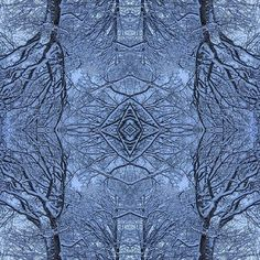 #love #symmetry and #repetition which leads to #powerfull #pattern especially when #mother #nature plays a #major #role here with a #mandala of #snow covered #tree #branches;  #nature #healthy #balanced #stilllife #art #artwork #illumination #meditation #lifestyle #thankfullness #mindfulness #hipandhealthy #sculpture #installation #journey #travelling