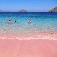 Pink beach at Komodo National Park  #komodo #flores #kakabantrip