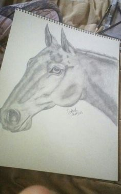 This is a drawing i did for my friend. The horses name is uma.