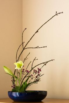 RK:Ikebana d'hivern | Flickr - Photo Sharing!