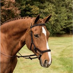 MICKLEM DELUXE COMPETITION BRIDLE w/ fancy stitched browband