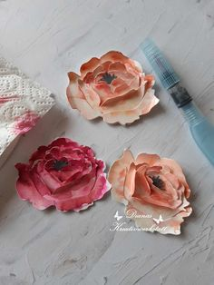 Diy Projects For Beginners, Crafty Projects, Peony Colors, Chicken Feed, Peonies Garden, Stampinup, Stampin Up Catalog, Creative Workshop, Fun Hobbies