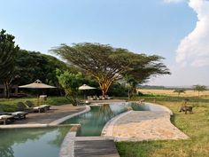 Editors' Picks: The Best Safari Lodges and Camps in Africa - Photos