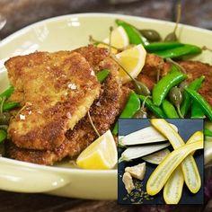 Parmesan- och pumpapanerad squash eller aubergine.
