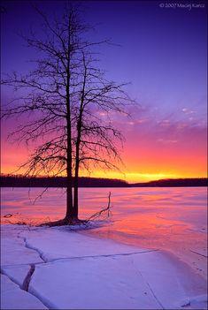 ~~Dream a Dream ~ lone tree guards a purple-pink sunset winter landscape by MaciejKarcz~~