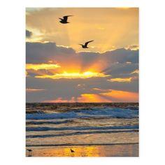 Beautiful Morning Beach Sunrise Scenery Postcard