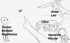 Virgo was too tired to deal with this Zodiac Signs Chart, Zodiac Sign Traits, Zodiac Signs Astrology, Zodiac Signs Horoscope, Zodiac Star Signs, Leo Zodiac, My Zodiac Sign, Capricorn, Zodiac Funny