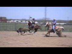 DruStew Team Roping Practice: keeping horses free - YouTube