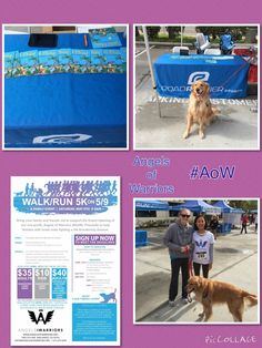 Race Day at Angels of Warriors #AoW