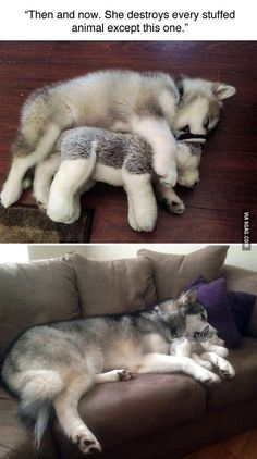 then and now ~ she destroyed every toy but this one
